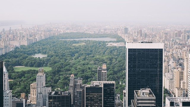 A view of Central Park.